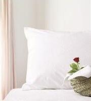 100% Cotton-Περκάλι